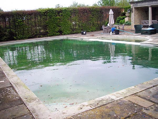 Hamonox Swimming Pool Spa Service Cleaning Maintenance